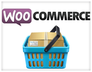 woocommerce store development