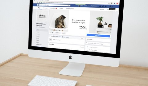 11 Reasons to Grow Your Business With Facebook Advertising