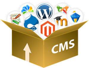 Why CMS (Content Management System) & 2 Best CMS For Your Website Development
