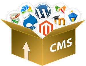 cheap cms website singapore