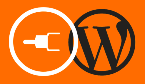 4 Types Of Websites You Can Develop Using WordPress