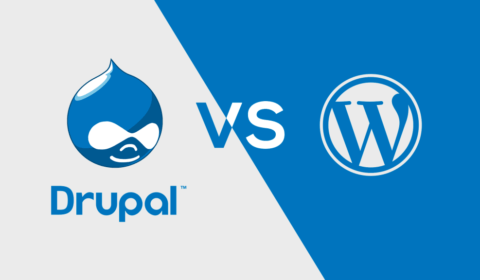 Drupal Vs WordPress Website Development
